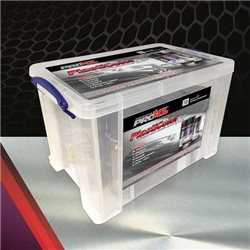 Plasticolor Kit - Bumper repair paint kit